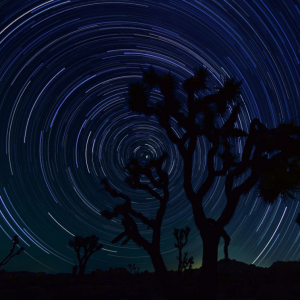 Night Photography at Joshua Tree State Park